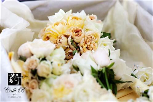cassie-tony-sunshine-coast-wedding004