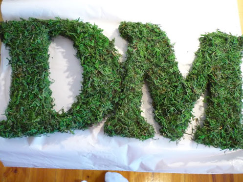DIY-Moss-Letters003