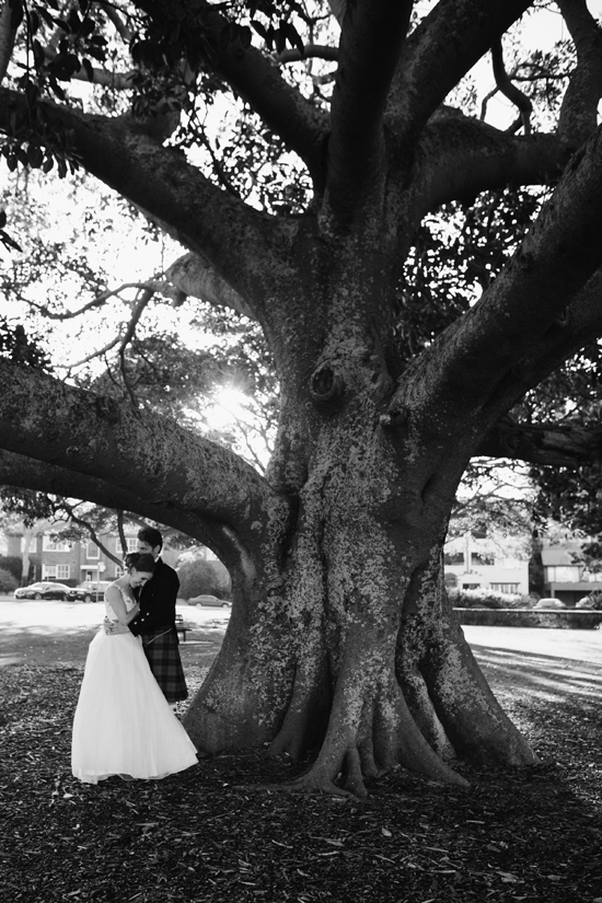 australian wedding tree
