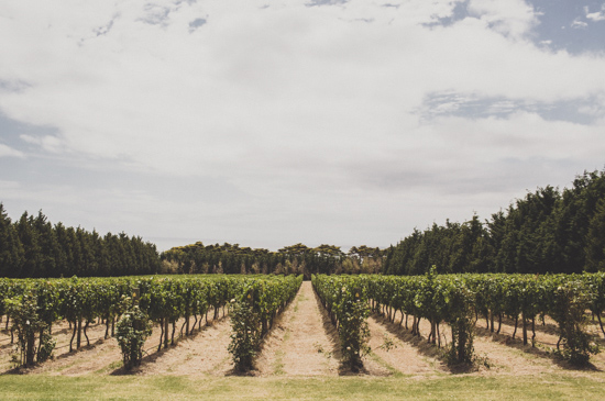 cocktail winery wedding007