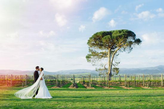 spring winery wedding046