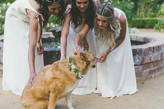 revelry sisters bridesmaids0029