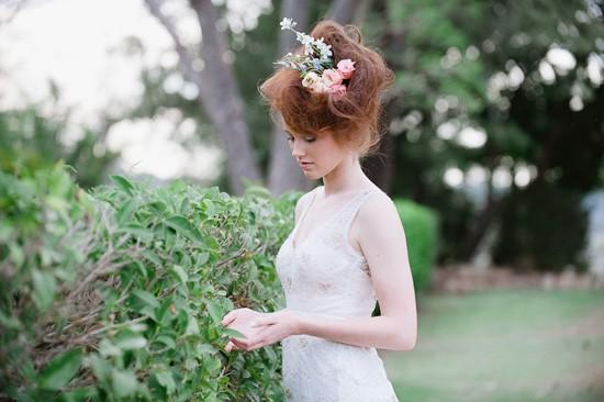 Terri Hanlon Photography