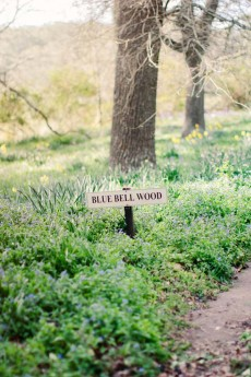 dreamy woodland wedding inspiration0060