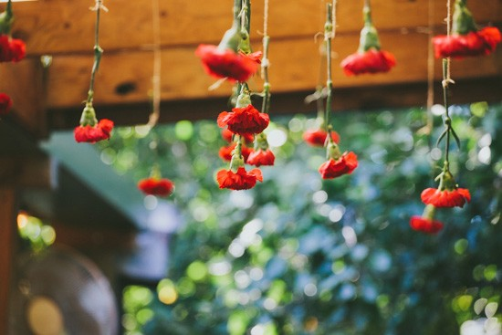 Red hanging flowers