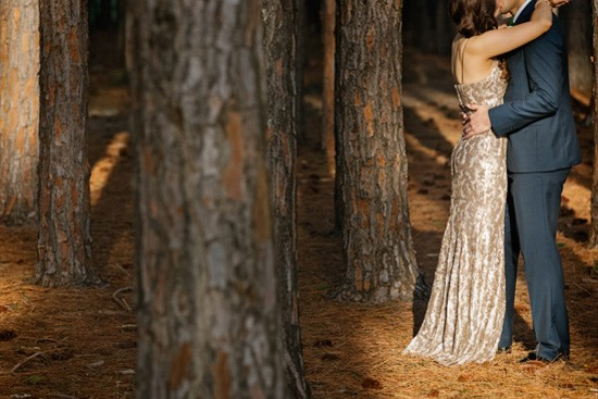 Gold Coast Forest Photographer