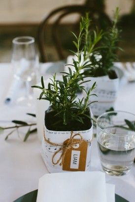 Potted herb wedding favors