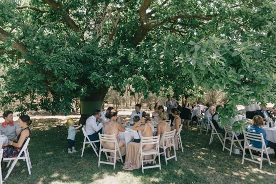Tables under dappled shade of trees at wedding