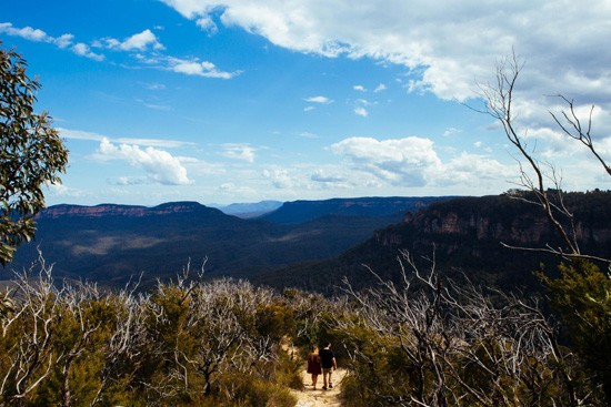Quirky Blue Mountains Engagement018