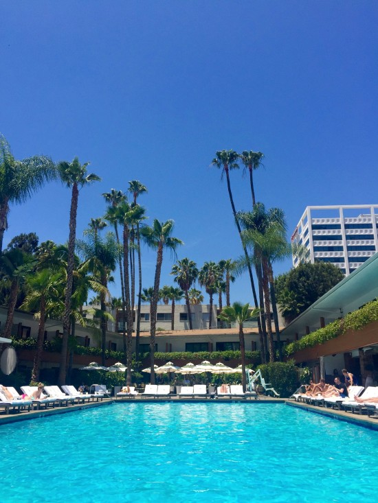 The Hollywood Roosevelt Pool