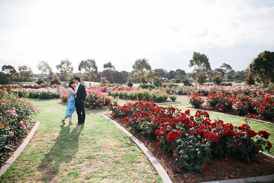 Romantic Rose Garden Engagement20160512_0144