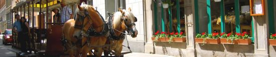 horse-drawn-carriage