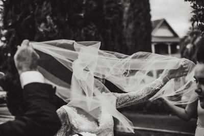 Van Middleton Photography