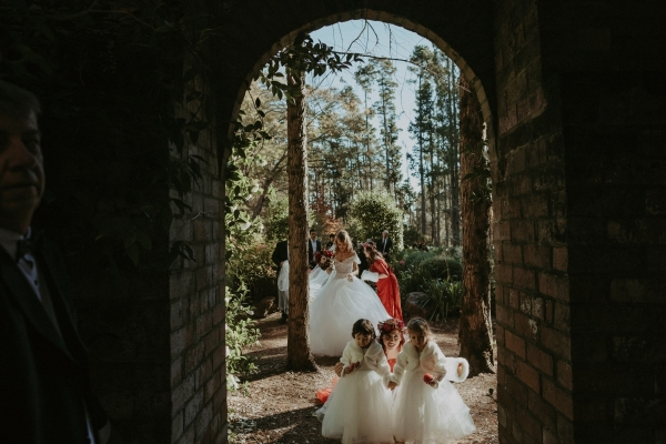 Image of Bridal Party at Breenhold Gardens