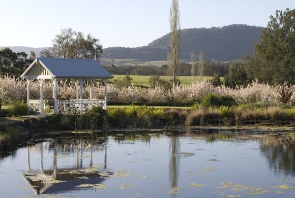 Inside The Photo: Crystal Creek Meadows, Kangaroo Valley ...